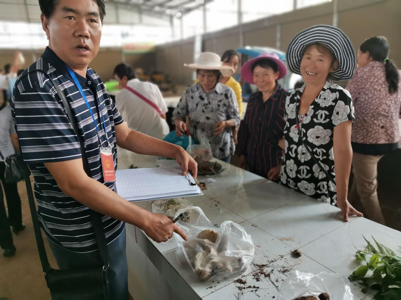 大姚县市场监督管理局零容忍有毒野生菌进入市场 图片新闻图片